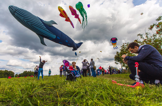 People fly kites during the 2017 Pyostroye Nebo kite festival in Tsaritsyno Park in Moscow, Russia on August 27, 2017. (Photo by Asya Dobrovolskaya/TASS)