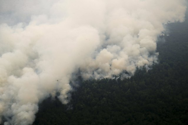 An aerial view of smoking rising from a burning forest at Ogan Komering Ulu area in Indonesia's south Sumatra province September 10, 2015. (Photo by Reuters/Beawiharta)