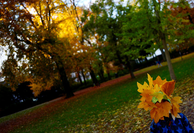 A boy with his head covered with fallen leafs enjoys a stroll with his family in a park in downtown Frankfurt, Germany, November 6, 2016. (Photo by Kai Pfaffenbach/Reuters)