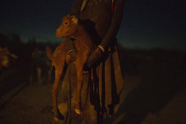 A Turkana girl holds a lamb at the end of the day inside her family's cattle kraal in the disputed area of the Ilemi triangle in northwestern Kenya near the borders with Ethiopia and South Sudan October 14, 2013. (Photo by Siegfried Modola/Reuters)