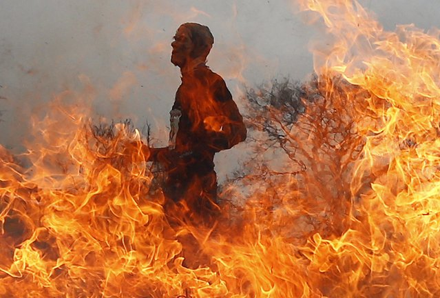 A competitor runs through a burning obstacle during the Tough Guy event in Perton, central England, January 26, 2014. (Photo by Darren Staples/Reuters)