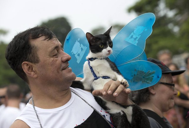 "A man and his cat attend the ""Blocao"" dog carnival in Rio de Janeiro, Brazil, Sunday, February 16, 2014. (Photo by Silvia Izquierdo/AP Photo)"