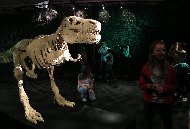 "Visitors watch ""Dinosaur"", a Lego sculpture by U.S. artist Nathan Sawaya presented during an exhibition The Art of the Brick, in Paris, France, Thursday May 14, 2015. The exhibition is created with Lego bricks and runs until August 30. (Photo by Christophe Ena/AP Photo)"