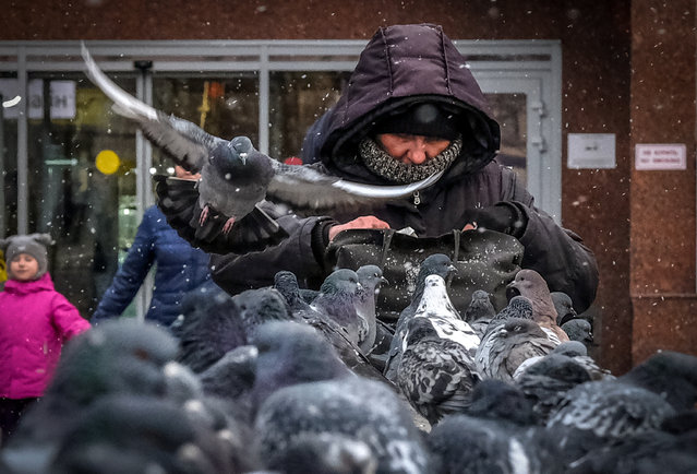 A woman looks into her bag by a flock of pigeons in Moscow on November 26, 2018. (Photo by Yuri Kadobnov/AFP Photo)