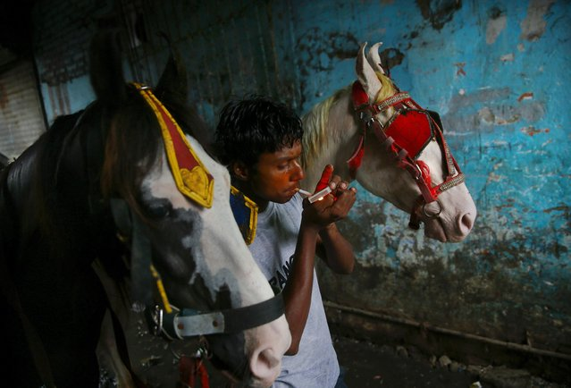 In this June 15, 2015 photo, coachman Aslam lights a cigarette as he stands near his horses before leaving for work at a stable in Mumbai, India. (Photo by Rafiq Maqbool/AP Photo)