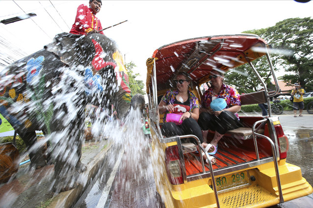 With assist from its mahouts, elephants blow water from its trunk to tourists on motor-tricycle or Tuk Tuk at Songkran or ancient Thai New Year celebration in Ayutthaya province, central Thailand Tuesday, April 11, 2017. (Photo by Sakchai Lalit/AP Photo)