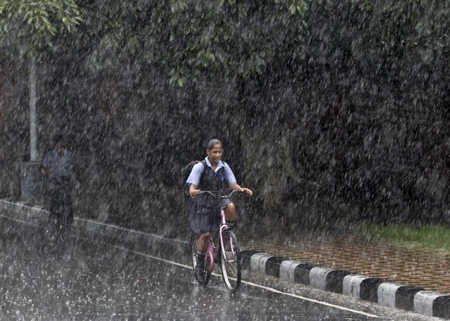 A schoolgirl rides a bicycle on her way back home during a heavy rain shower in Chandigarh, India, July 9, 2015. Good rainfall this year is key to boosting a rural economy hit by delayed and lower rains last year, as well as keeping a lid on food inflation and giving India's central bank more scope to cut lending rates. (Photo by Ajay Verma/Reuters)