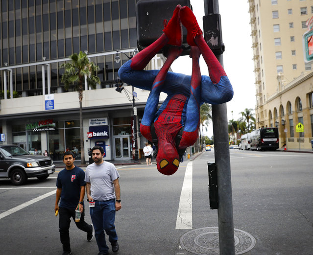 In this Thursday, May 25, 2017 photo, Rashad Rouse, 27, whose dream is getting his star on the Hollywood Walk of Fame, hangs upside down from a traffic signal pole in a Spider-Man costume to get attention from tourists on Hollywood Boulevard, in Los Angeles. Rouse is a musician and sometimes works as an Uber driver when he is not working on the boulevard. (Photo by Jae C. Hong/AP Photo)