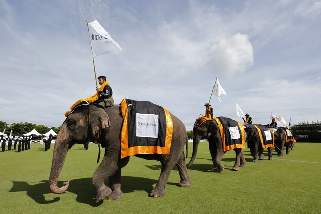 Elephants and mahouts parade onto a sports field for first day's play at the King's Cup Elephant Polo Tournament 2014 held near Bangkok, in Samut Prakan province, Thailand, 28 August 2014. (Photo by Barbara Walton/EPA)
