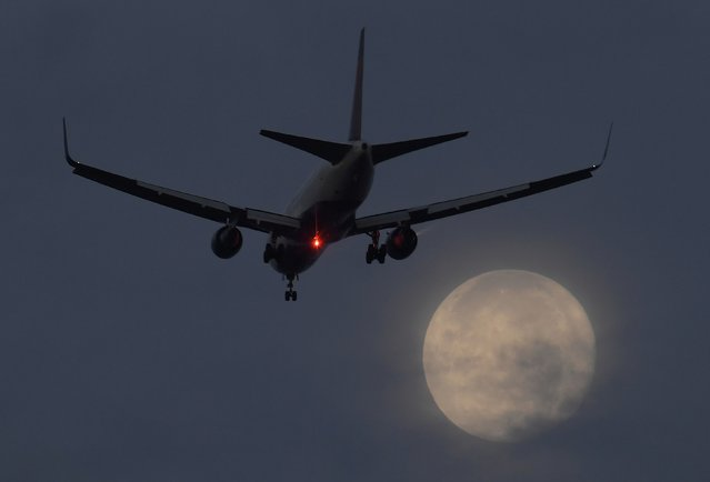 "A passenger aircraft makes it's landing approach to Heathrow airport in front of a ""super moon"" at dawn in west London, Britain, October 17, 2016. (Photo by Toby Melville/Reuters)"