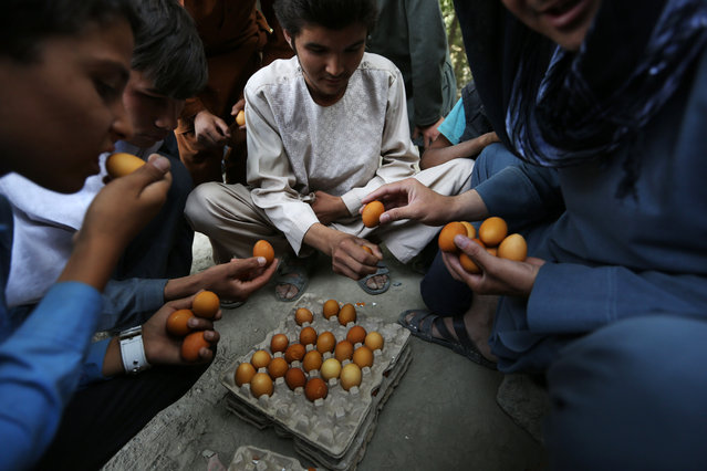 Afghan street boys play a game of egg fighting, with boiled eggs, in Kabul, Afghanistan Friday, August 14, 2015. The aim of the game is to strike each others eggs, trying to break the shell of your opponents egg without breaking your own. (Photo by Rahmat Gul/AP Photo)