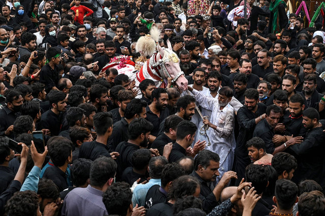 Shiite Muslim mourners gather to touch a white horse symbolising the one used by seventh-century Muslim saint Imam Hussein in the battle, during the Islamic month of Muharram ahead of Ashura ceremonies, in Lahore on August 29, 2020. Ashura is a period of mourning for Shiite Muslims during Muharram commemorations to mark the seven-century martyrdom of Prophet Mohammad's grandson Imam Hussein who was killed in battle in Karbala in Iraq 680 AD. (Photo by Arif Ali/AFP Photo)