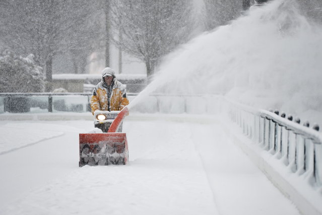 Mike Davis clears snow from the Millennium Park skating rink on March 5, 2013 in Chicago, Illinois. The worst winter storm of the season is expected to dump 7-10 inches of snow on the Chicago area with the worst expected for the evening commute. (Photo by Brian Kersey/AFP Photo)