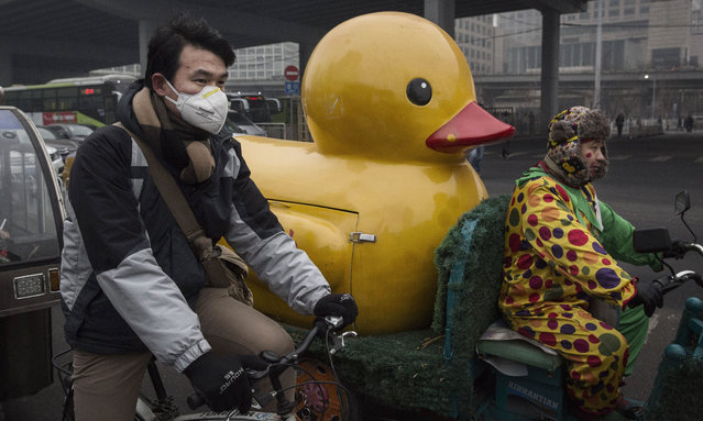 A Chinese man wears a mask to protect against pollution as he waits at a red light while commuting to work in heavy smog on December 8, 2015 in Beijing, China. The Beijing government issued a 'red alert' for the first time since new standards were introduced earlier this year as the city and many parts of northern China were shrouded in heavy pollution. (Photo by Kevin Frayer/Getty Images)