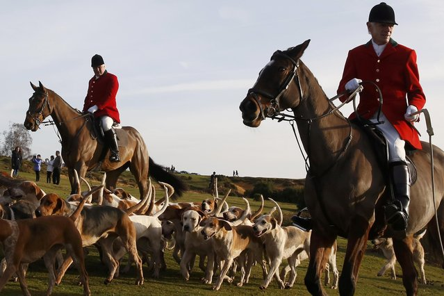 Members of the New Forest Hunt arrive at Boltons Bench for the annual Boxing Day hunt in Lyndhurst, southern England December 26, 2016. Since a ban stopped fox hunting with hounds, hunts continued with dogs chasing down a pre-laid scented trail instead of a fox. (Photo by Luke MacGregor/Reuters)