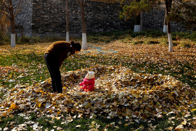 A mother looks at her daughter among the fallen leaves piled up in a shape of heart in Beijing, China, November 19, 2018. (Photo by Jason Lee/Reuters)
