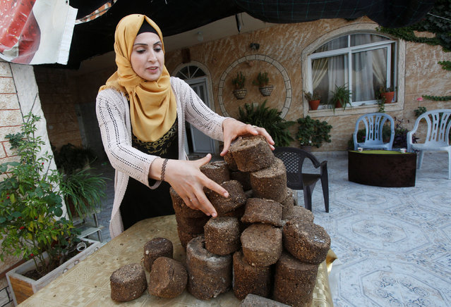 Palestinian woman Faeda Yamak makes artificial wood from environmental residues to be used as alternative to natural wood for heating purposes and to support women employment, in the West bank village of Beita, near Nablus November 15, 2016. (Photo by Abed Omar Qusini/Reuters)