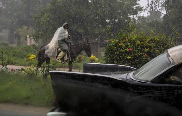 A man, using a piece of plastic against protection of the rain caused by Hurricane Ida, rides his horse on a road leading to Batabano, in the Mayabeque province, Cuba, Friday, August 27, 2021. (Photo by Ramon Espinosa/AP Photo)