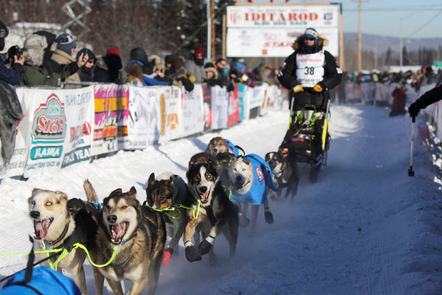 Joar Leifseth Ulsom of Norway competes in the official restart of the Iditarod, a nearly 1,000 mile (1,610 km) sled dog race across the Alaskan wilderness, in Fairbanks, Alaska, U.S. March 6, 2017. (Photo by Nathaniel Wilder/Reuters)
