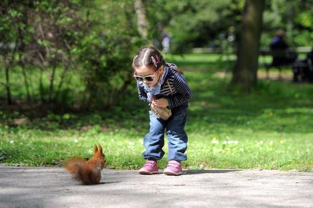A child looks at a squirrel at the Royal Lazienki Park in Warsaw, on Easter Monday, Poland, 21 April 2014. (Photo by Grzegorz Jakubowski/EPA)