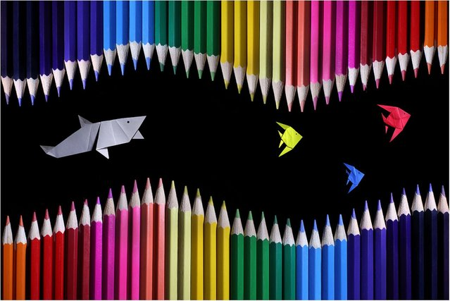 """Colored Pencil and Origami Landscapes: """"A shark chases origami angelfish"""". (Photo by Victoria Ivanova)"""