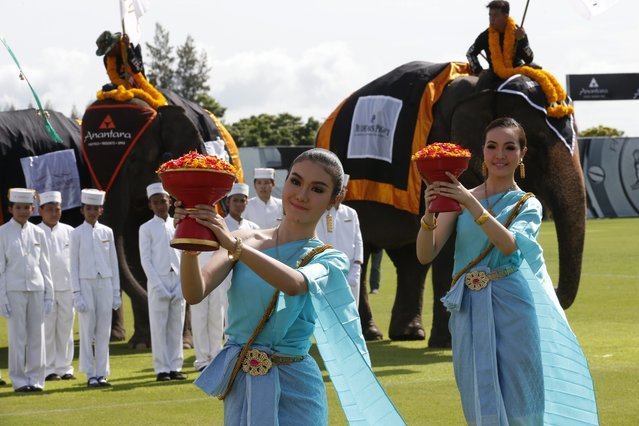 Thai traditional dancers carry and dance with flower petals and elephants as an elephant parade opens first day's play at the King's Cup Elephant Polo Tournament 2014 held near Bangkok, in Samut Prakan province, Thailand, 28 August 2014. (Photo by Barbara Walton/EPA)