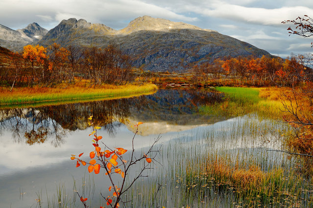 Autumn landscape in Troms. Ersfjord river. Reflections on water. (Photo by John-Hemmingsen/Getty Images)