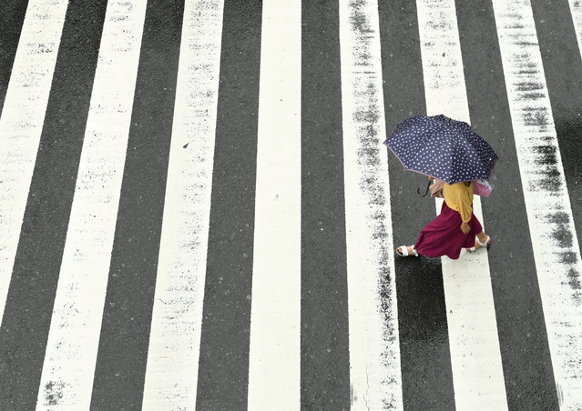 A woman walks in the rain at a pedestrian crossing near Osaka Station as Typhoon Hagibis approaches Osaka, Japan, October 12, 2019. (Photo by Annegret Hilse/Reuters)