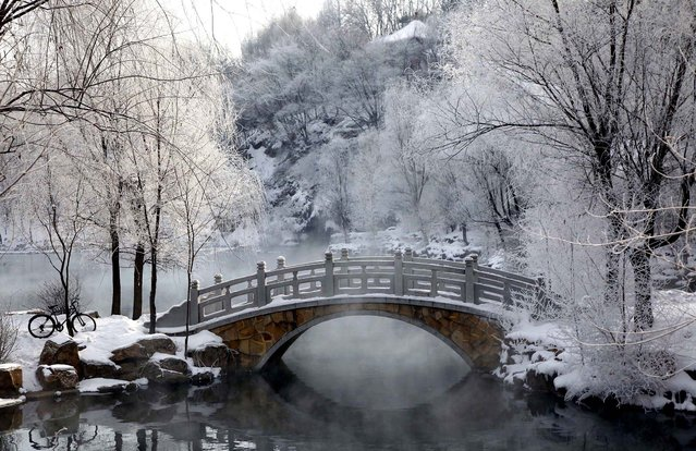 Snow blankets a park in Benxi, in China's Liaoning province, January 24, 2011. (Photo by Ng Han Guan/Associated Press)