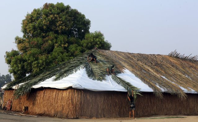Indigenous people from the Kamayura tribe cover the roof of their house with sape grass in their village at Xingu national park in Mato Grosso, Brazil, October 3, 2015. (Photo by Paulo Whitaker/Reuters)