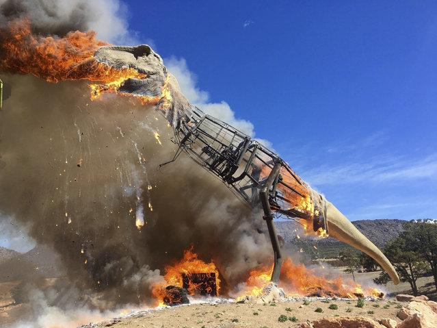 A life-sized animatronic T-Rex at the Royal Gorge Dinosaur Experience in Canon City, Colorado, USA goes up in flames after an electrical issue on March 21, 2018. (Photo by AP Photo/Stringer)