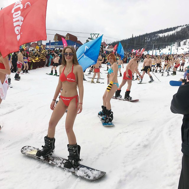 A girl in a swimsuit participate in the Grelka Fest at the ski resort Sheregesh in Tashtagolsky District of Kemerovo Oblast, Russia on April 15, 2018. (Photo by Olga K/The Siberian Times)