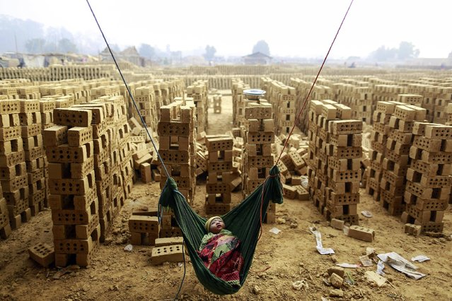 A boy sleeps in a hammock while his mother works at a brick kiln on the outskirts of Yangon February 1, 2015. (Photo by Soe Zeya Tun/Reuters)