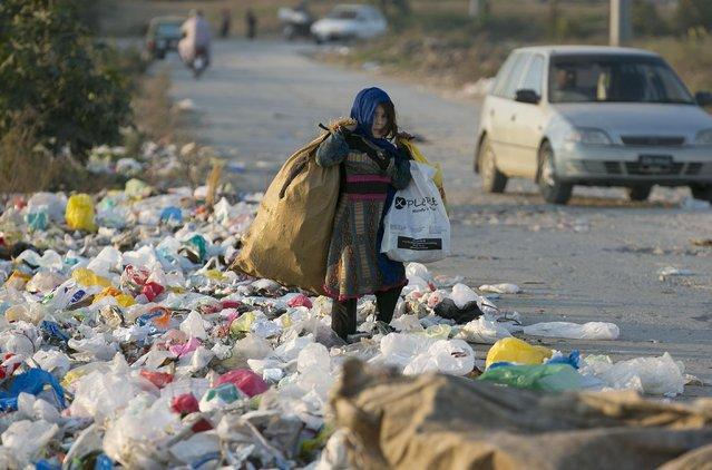 A displaced Pakistani girl collects recyclable goods from a garbage to earn living for her family in Islamabad, Pakistan, Tuesday, January 19, 2016. (Photo by B.K. Bangash/AP Photo)
