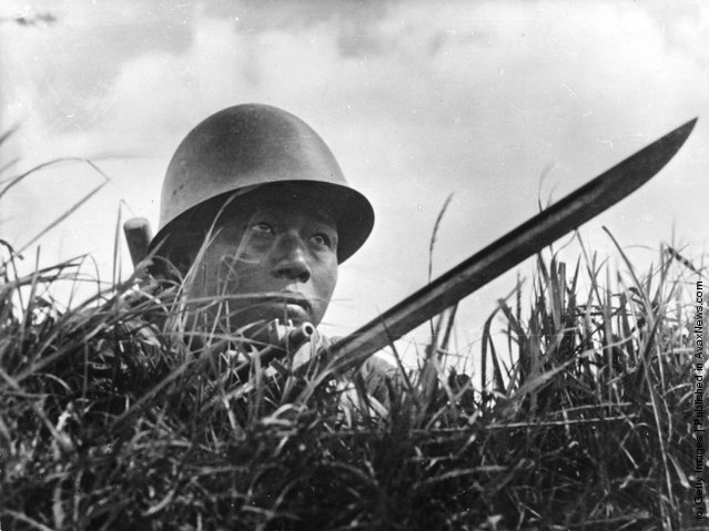 1950: A Chinese soldier hiding in the grass with a long bayonet at a border point