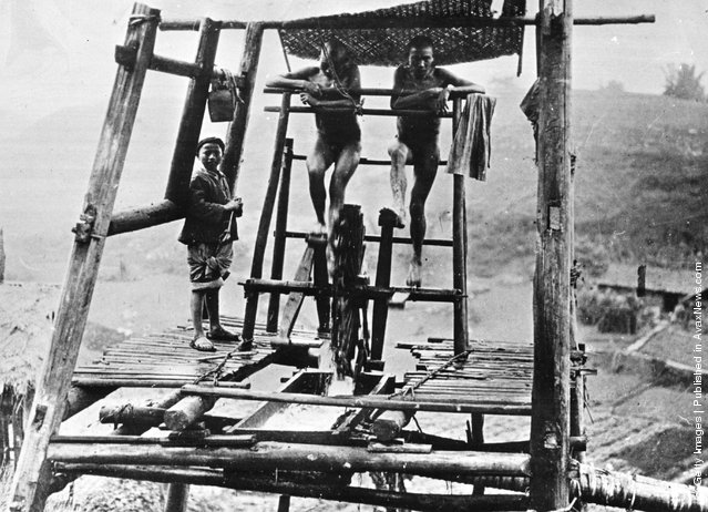 1950: Youths turning a water wheel for the irrigation of Asian rice fields and tea gardens