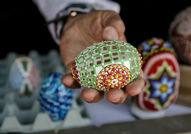 "In this Thursday, April 13, 2017, picture artisan Nicu Poenariu displays for a photograph an Easter egg on sale at a fair in Bucharest, Romania. New trends are joining old traditions in Romania this Easter. In the predominantly Christian Orthodox country of 19 million, age-old crafts such as intricate egg decorating and painted religious icons are a major feature of the Holy Week run-up to Easter Sunday. But a more commercial flavor has slowly crept into the celebrations. At an Easter fair outside the Bucharest palace built by the late Communist leader Nicolae Ceausescu, entertainers strutted around wearing giant rabbit heads. Huge models of colored eggs in baskets dotted the displays. An oversized hen pulled a cart while a plastic rabbit sat in the back with a model of large painted egg, scenes that could have been inspired by ""Alice in Wonderland"". Painted religious symbols, a major feature of Christian Orthodox observances, also were on display and for sale at the fair and the patriarchy, the seat of the Romanian Orthodox Church. Tradition flourished elsewhere in the Romanian capital. Craftsmen such as Nicu Poenaru skillfully embellished hen, ostrich and goose eggs by hollowing out the contents and carefully piercing tiny holes in the shells, creating objects of artistic and religious value. Prices range from 15 lei to 150 lei ($3.50 to $35) depending on the size and intricacy of the design. While humans in rabbit costumes were all the rage at the fair, one child got to see a real rabbit close up, crouching down by the animal's cage with wonder. (Photo by Vadim Ghirda/AP Photo)"