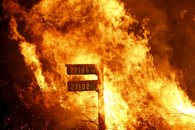 Flames from the Jerusalem Fire consume a sign containing addresses to homes along Morgan Valley Road in Lake County, California August 12, 2015. (Photo by Robert Galbraith/Reuters)
