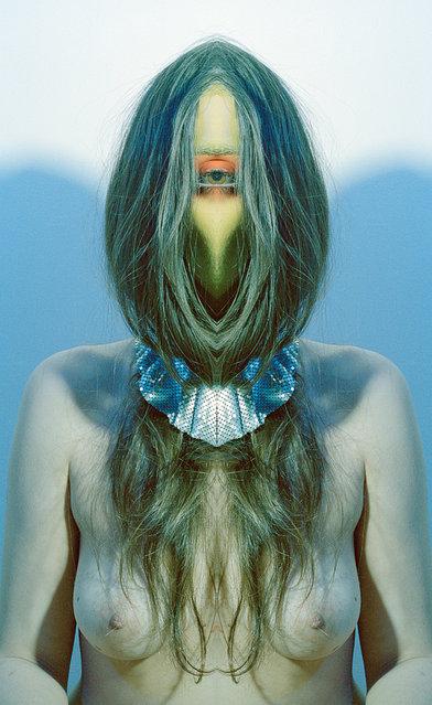 Anne Lamb - art