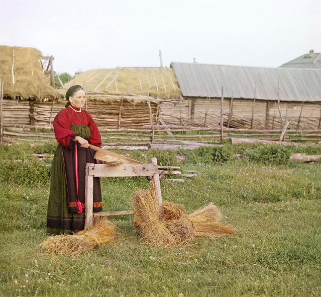 Photos by Sergey Prokudin-Gorsky. Peasant woman breaking flax. Russia, Perm Province, Place unknown, circa 1907