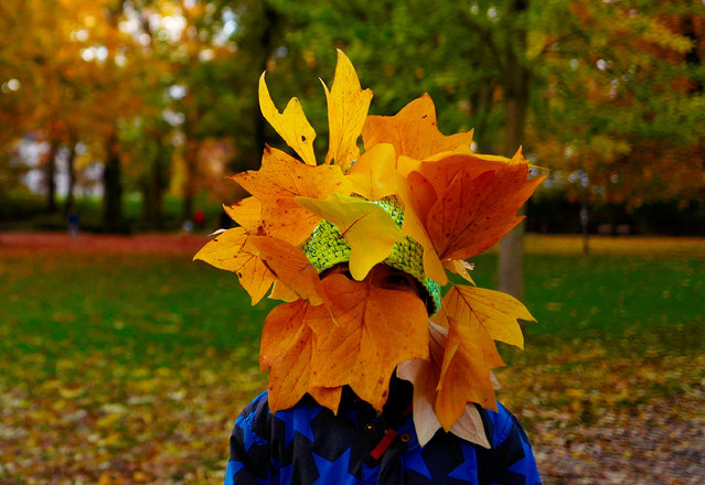 A boy covers his head with fallen leaves as he enjoys a stroll with his family in a park in downtown Frankfurt, Germany, November 6, 2016. (Photo by Kai Pfaffenbach/Reuters)