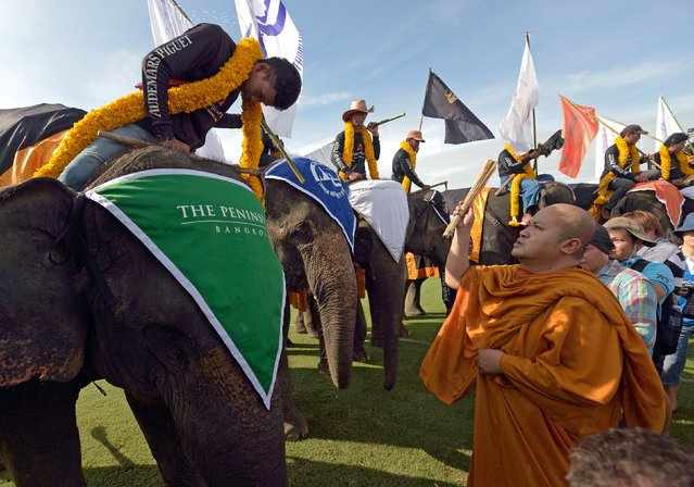 A Thai Buddhist monk (R) sprinkles holy water on elephants during a religious ceremony as part of the annual King's Cup elephant polo tournament in Samut Prakan province on August 28, 2014. The King's Cup elephant polo tournament, which is held annually to promote elephant projects and conservation, takes place from August 28 to 31. (Photo by Pornchai Kittiwongsakul/AFP Photo)