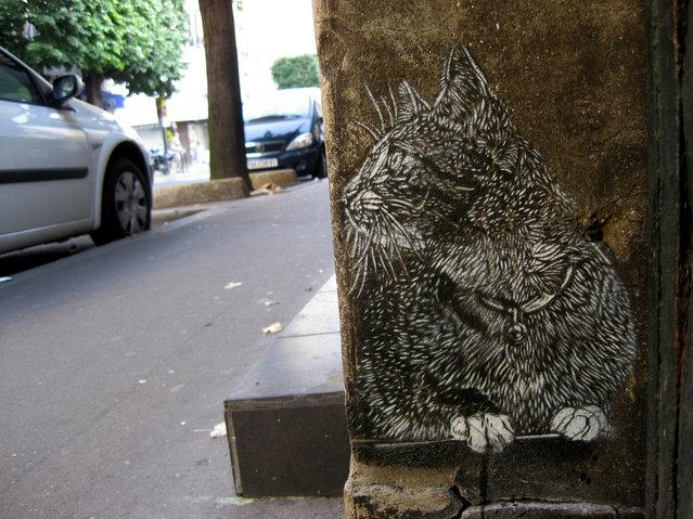 Paris (Vitry). (Photo by Christian Guémy)