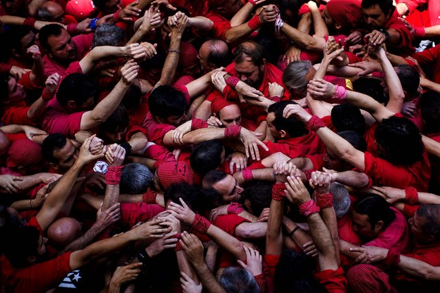 "Members of the Castellers of Barcelona join their hands to start making their ""castell"" or human tower in the Barcelona neighborhood of Gracia, Spain, on May 19, 2013. A ""castell"" is a human tower traditionally built during festivals in many places in Catalonia. At these festivals, several ""colles"" or teams compete to build the most impressive towers they can. (Photo by Emilio Morenatti/Associated Press)"