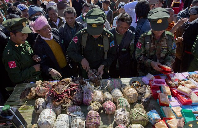In this January 12, 2015 photo, Ta'ang National Liberation army officers display opium, heroin and methamphetamine allegedly confiscated from pro-government militias before setting them alight before cheering crowds in Mar Wong, northern Shan state, Myanmar. (Photo by Gemunu Amarasinghe/AP Photo)