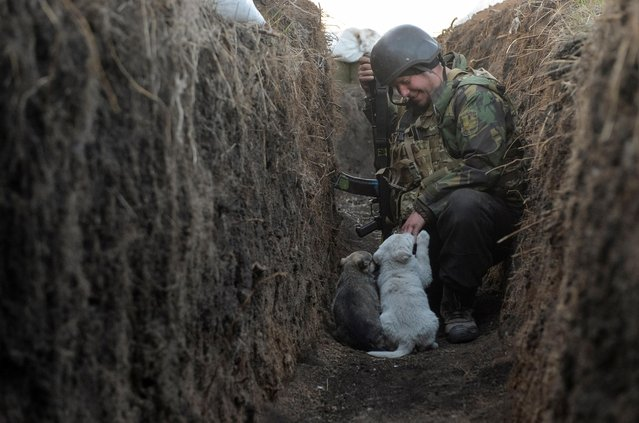 Volodymyr, a service member of the Ukrainian armed forces, plays with puppies at fighting positions on the line of separation from pro-Russian rebels in Donetsk region, Ukraine on April 10, 2021. The two unnamed puppies living on frontline positions will be taken home and named by soldiers departing on troops rotation. (Photo by Oleksandr Klymenko/Reuters)