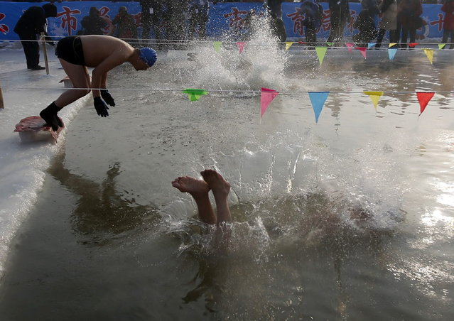 Swimmers dive into a pool carved into the thick ice covering the Songhua River during the Harbin Ice Swimming Competition in the northern city of Harbin, Heilongjiang province January 5, 2014. (Photo by Kim Kyung-Hoon/Reuters)