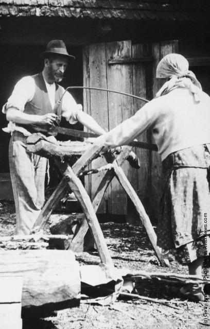 circa 1925:  Jewish peasants sawing wood