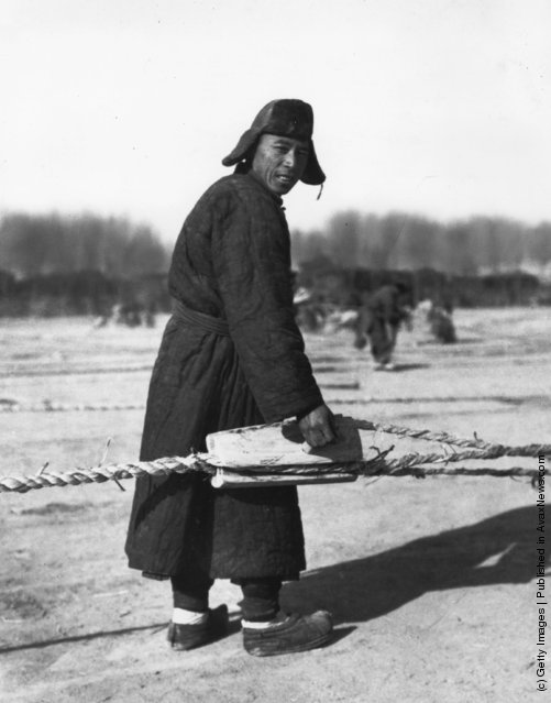 1950: A Chinese farmer wearing traditional clothes working in a rice field before its annual flooding