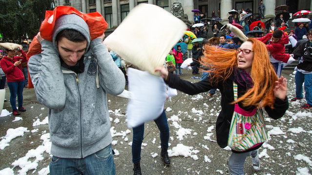 A young man gets clobbered by a pillow in this scene from the 2014 Vancouver Pillow Fight, at the Vancouver Art Gallery on April 5, 2014 on International Pillow Fight Day in Vancouver, British Columbia, Canada. (Photo by Mark Klotz)